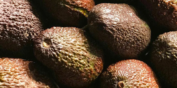 How ro ripen avocado fast