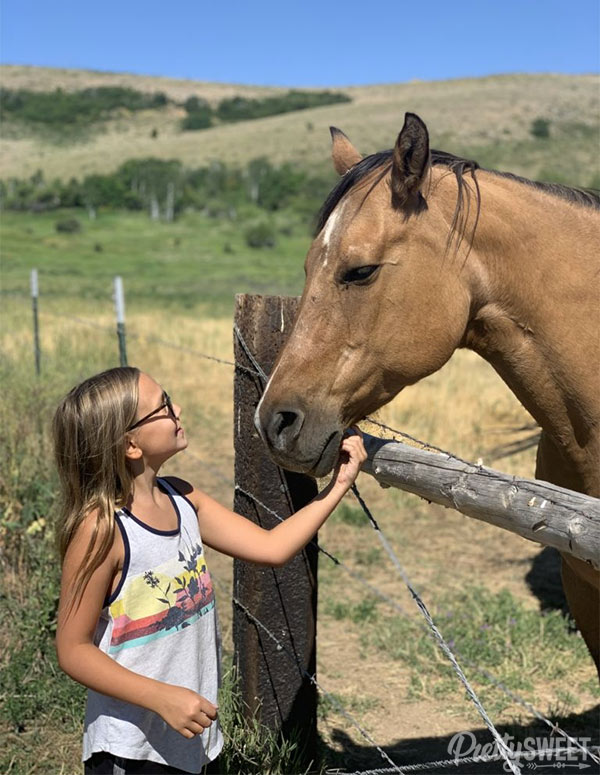 conestoga ranch horse with cameron