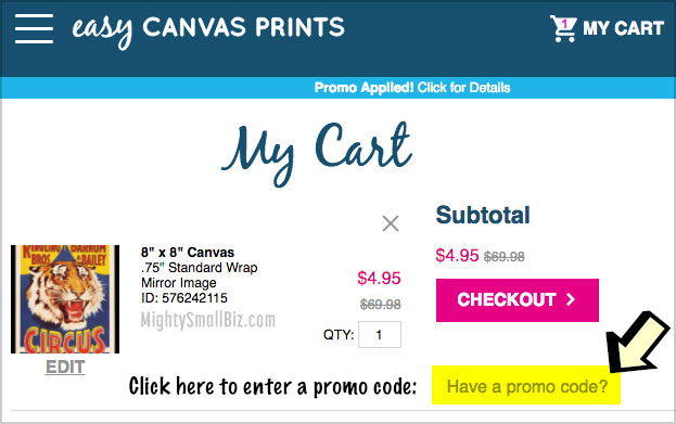 enter easy canvas promo code