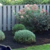 landscaping home business tax write off