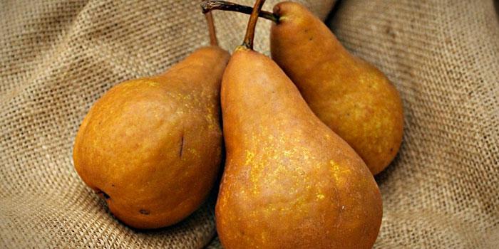 pears ripen